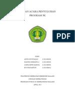 Sap Program 5k