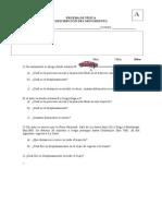Prueba de Física 2 Medio 2015