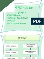 Matrix Nuclear
