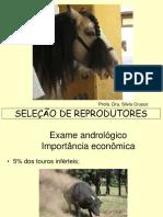 Seleção reprodutores.pdf