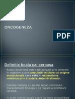 12_oncogeneza.ppt