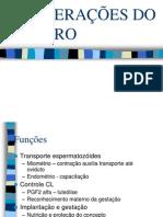 Alterações do útero.pdf