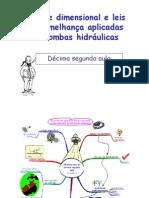 An Lise Dimensional e Leis de Semelhan as-1