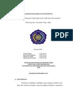 Laporan Pendahuluan Pneumonia Revisi Terbaru 15 April 11.04