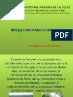 importncia del boque.pdf