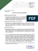 Raport de Audit Finan Ro
