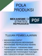 Mekanisme Reproduksi.pdf