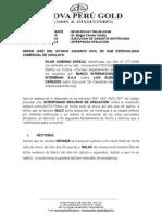 Apelacion Luis Alberto Arreglado