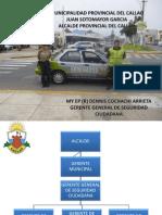 GG-DE-SEGURIDAD-CIUDADANA.pdf