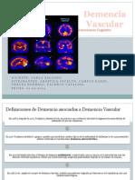 Demencia Vascular (1)