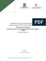 StrategieIMM Documentul Strategic 050810