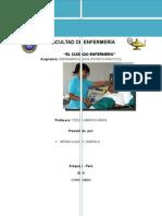 El Cuidado Enfermero - Monografia