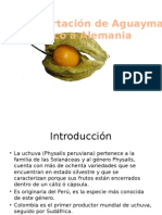 plandeexportacionuchuvasfrescasaalemania-090531124509-phpapp01
