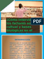 diapositiva economica