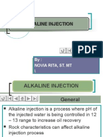 CHAPTER 09 English Version ALKALINE Injection
