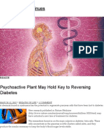 Psychoactive Plant May Hold Key to Reversing Diabetes _ the Journey Continues