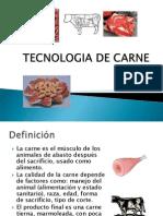 Tecnología e Industria de Carnes