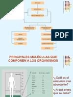 Biomoléculas Inorgánicas y Organicas
