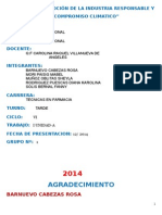 ETIVA PROFESIONAL.docx