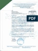 Carta FEMOCCPAALM al Presidente de la Comisión de Constitución y al Presidente de la Comisión de  Justicia y Derechos Humanos