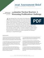 nuclear sub marines.pdf