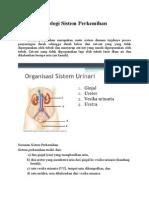 Anatomi Fisiologi Sistem Perkemihan.docx