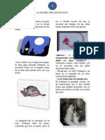 209745831 La Ultima Vida de Un Gato
