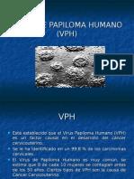 87272985-Virus-de-Papiloma-Humano-Vph.ppt