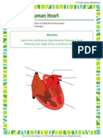 label-the-human-heart.pdf