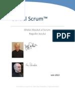 Scrum Guide RO