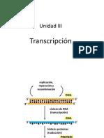 Sesion_1_Transcripcion