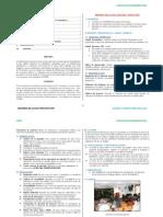 021Resumen de La Guía Practica -FLORES FLORES