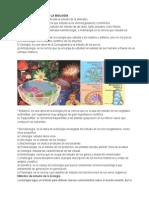 Divisiones y Ramas de La Biología