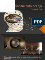 Funcionamiento Del Ojo Humano