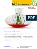 20th April Daily Global Rice E_Newsletter by Riceplus Magazine