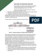 Management Brief on Pressure Oxidation