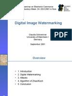 schremmer_watermarking