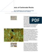 Diagenesis of Carbonate Rocks