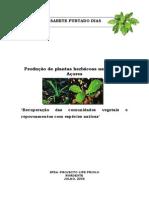 Relatorio Elisabete Dias Producao Plantas Endemicas