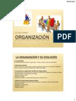 La Organización 11-04-2015.pdf