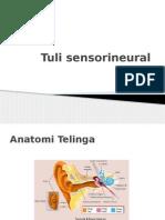 Tuli Sensorineural