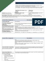 patrick secondary gov & econ lesson plan template