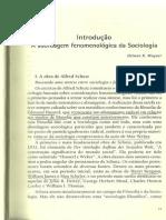 Schutz Alfred Sobre Fenomenologia e Relacoes Socias
