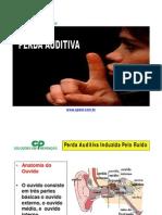 CP PERDA AUDITIVA.pdf