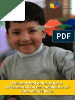Guia Metodologica Para Implementacion Del Curriculo