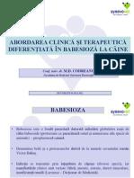Babesioza