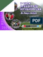 Diseño Curricular Diversificado Del Pcr