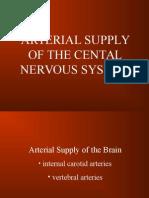 Addendum Arterial Blood Supply of CNS