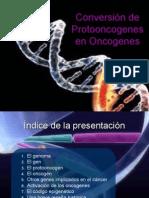 Conversion de Protooncogenes en Oncogenes