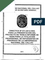 Directiva N° 011-2013-OSG